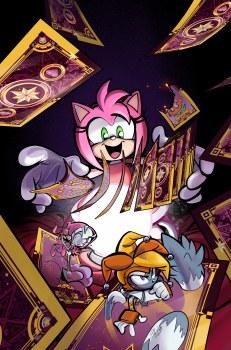 Sonic the Hedgehog #45 Cvr B Skelley (C: 1-0-0)