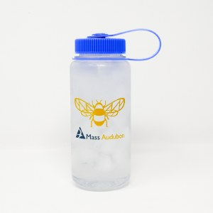 Mass Audubon Bee 16 oz Water Bottle