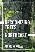 Beginner's Guide to Recognizing Trees of the Northeast