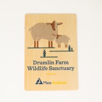 Drumlin Farm Wooden Postcard