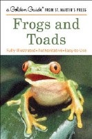 Golden Guide Frogs and Toads