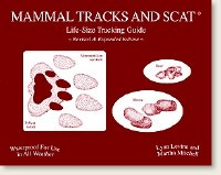 Mammal Tracks and Scat Life-Size Tracking Guide