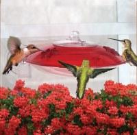 Droll Yankees Window Hummingbird Feeder