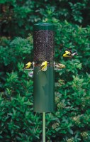 Classic Pole Mounted Feeder