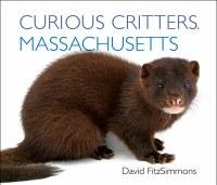 Curious Critters Massachusetts