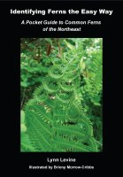 Identifying Ferns the Easy Way