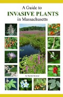 A Guide to Invasive Plants In Massachusetts