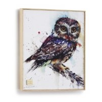 Owl Framed Canvas