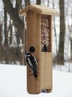 Cedar Woodpecker Feeder