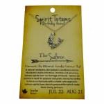 Spirit Totem Salmon - Jul 22 - Aug 21