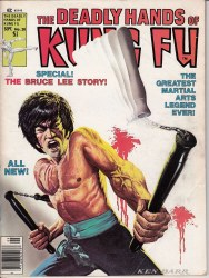 DEADLY HANDS OF KUNG FU #28 VG
