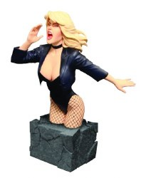 WOMEN OF THE DC UNIVERSE BLACK CANARY BUST