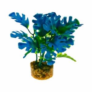 Plant Philo Leaf Blue