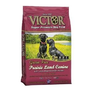 Victor Gf Lamb 30#