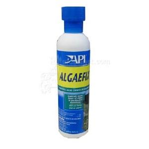 Algaefix 8 OZ