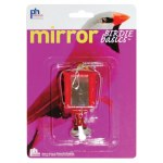 Bird Lantern Mirror