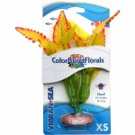 Colorbrst Ferndale Leaf Yl  XS