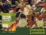 Higgins Vita Conur Lovebird 5#