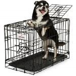 """Petmate Crate 24"""" DD"""