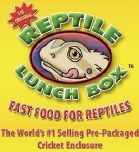 Reptile Lunch Box Crickets 24count