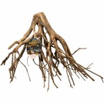 Talawa Mangrove Root Md