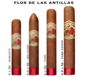 Flor Las Antillas Toro Gordo S