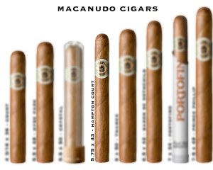 Macanudo Hampton Court S