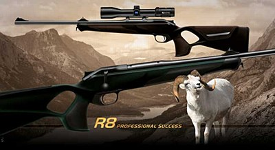 R8 Professional Success .308