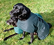 Waxed & Towelling Dog Coat 24""