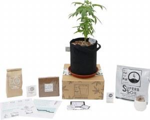 A Pot For Pot +1 Expansion Cannabis Grow Kit (5 gallon)