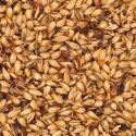 8L Belgian CaraPils 8 Malt (per lb) - Click To Customize