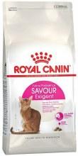 RC CAT EXIGENT AROMATIC 33 4kg