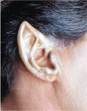 Large Elf Ear Tips