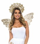 Golden Angel Wing Kit
