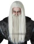 Dark Wizard Wig