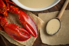 Lobster Brodo Sauce