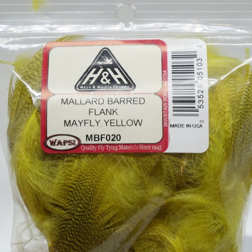 Barred Mallard Flank FL.Yellow