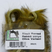 Barred Rabbit Black Olive Var