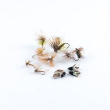 Caddis Assortment