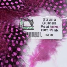 Guinea Fowl Hot Pink
