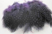 Strung Guinea Feathers Purple