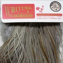 Whiting Bronze 1/2 Saddle LDun