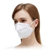 Masks N95 (20 Count)