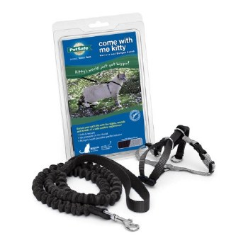 Come With Me Kitty Harness & Bungee Leash, Medium (Black)
