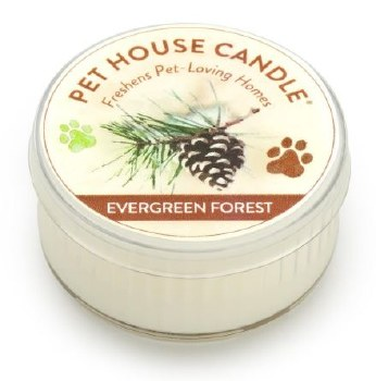 Evergreen Forest Mini Candle