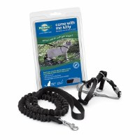 Come With Me Kitty Harness & Bungee Leash, Large (Black)