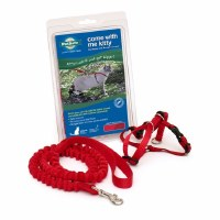 Come With Me Kitty Harness & Bungee Leash, Medium (Red)
