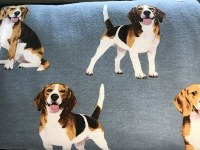 Beagle Bottoms L