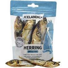 Whole Herring 1.5oz