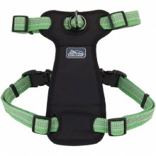 """Brights Harness Meadow 12-18"""""""